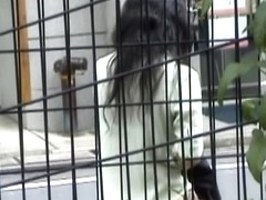 Japanese ass spied by a pervert voyeur with camera