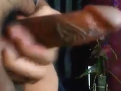 Busty and Hot Shemale Cam cock Jerking