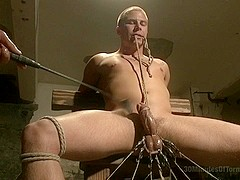 30 minutes Of Torment. Straight stud takes clover clamps to the balls