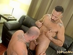 Muscly bears rimming ass and sucking dick