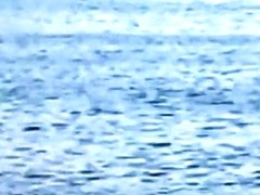 Crazy latin couple fucks in public in the sea with lots of spectators