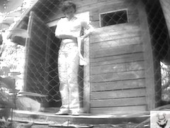 Girls Pissing voyeur video 316