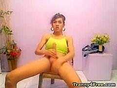 Ladyboy Masturbates her Big Cock