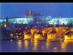 Prague Shemale Agency