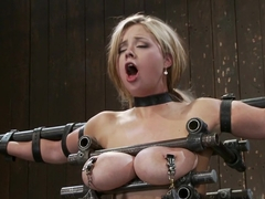 Katie Kox Thanks for the mammaries.