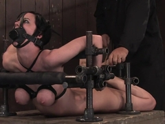 Cherry Torn Hogtied and made to cum so much and so hard that it brings tears.