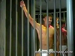 Big Brazilian Cock Threesome