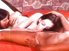 Annette Haven Collection