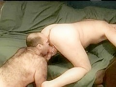 Horny bear sucks with lust his lover's throbbing member