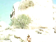 Duo Cowpokes