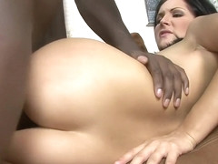 Alluring Chelsie Rae has needs that only a black stallion can satisfy