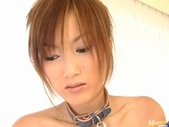 Collared Slave Yoko Noda Is Led To A Threesome